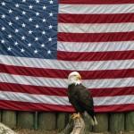 Nebankovní americká hypotéka bez podvodu